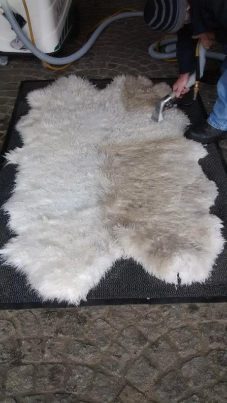 Sheepskin Rug Cleaning Showing Before And After Areas On A